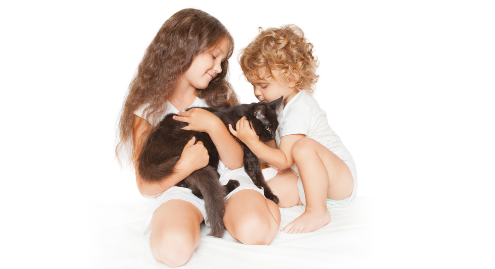 do maine coons get along with children well