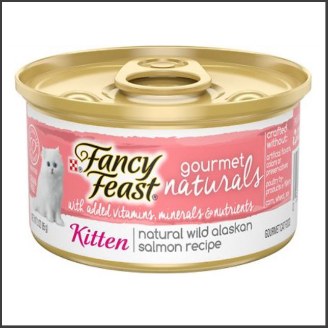 kitten wet food for Maine coon