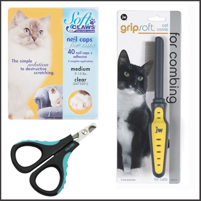 Grooming Tools for Maine Coons