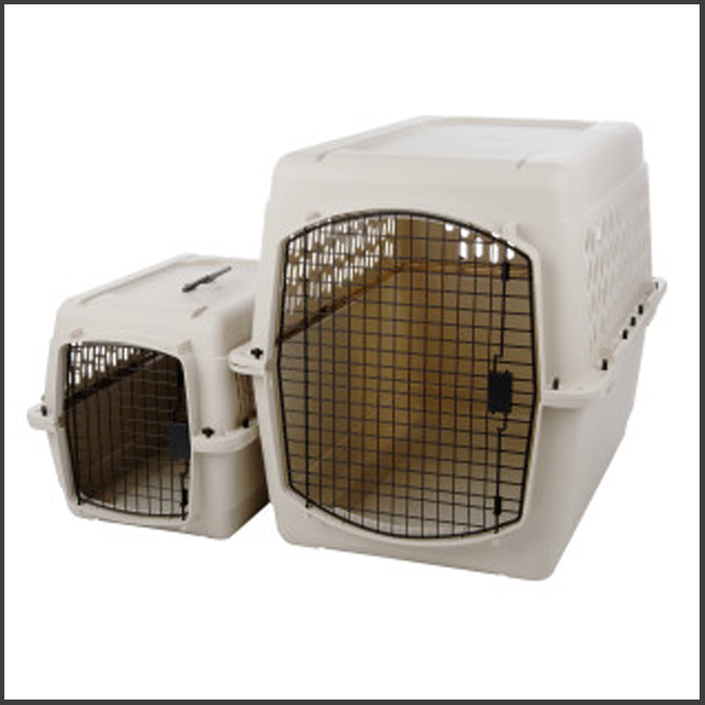 Kennels for traveling with Maine Coons